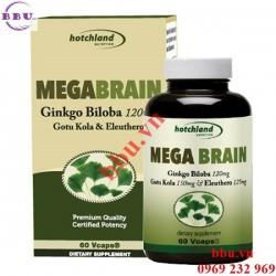MegaBrain Ginkgo Biloba hoạt huyết dưỡng não, bổ máu